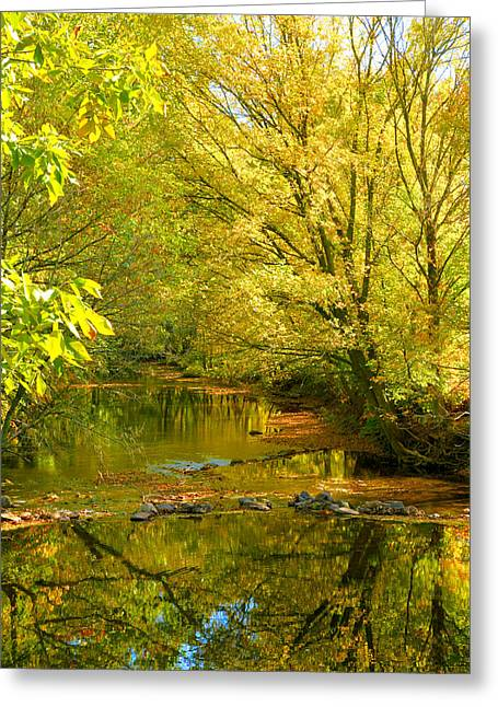 Seasonal Prints Rural Prints Greeting Cards - Owens Creek III Greeting Card by Steven Ainsworth