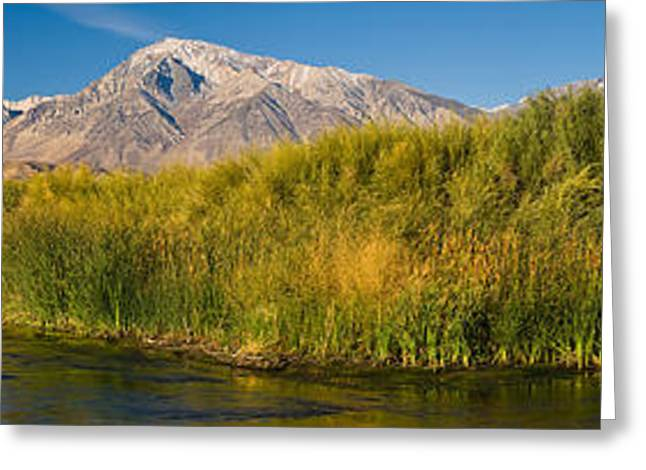 Bishops Peak Greeting Cards - Owens River Flowing In Front Greeting Card by Panoramic Images