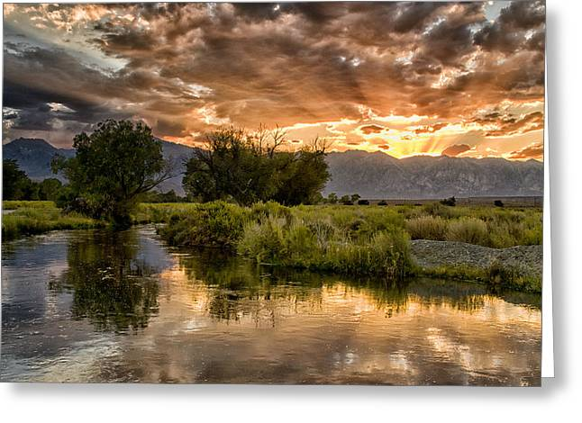 Eastern Sierra Greeting Cards - Owens River Sunset Greeting Card by Cat Connor