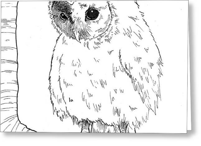 Owl Baby Greeting Card by Callan Rogers-Grazado