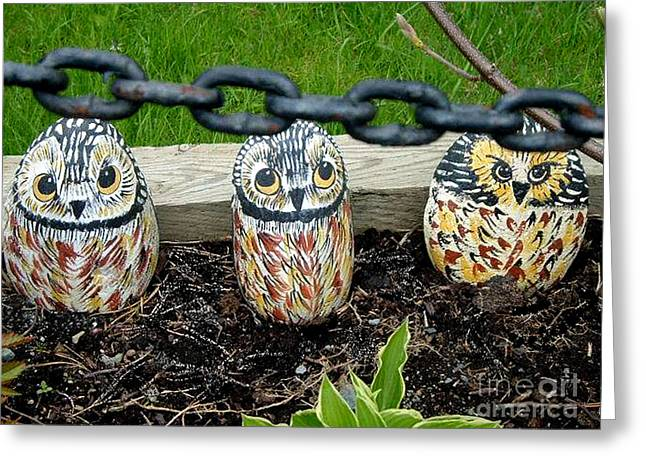 Chain Gang Greeting Cards - Owl Chain Gang Greeting Card by Barbara Griffin