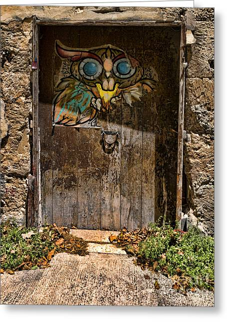Genealogy Photographs Greeting Cards - Owl door Greeting Card by Gillian Singleton