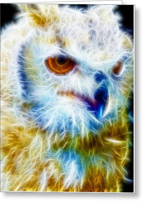 Manley Greeting Cards - Owl - Filter Effect Manipulation Greeting Card by Gina Lee Manley