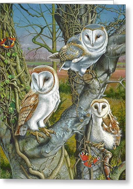 Portriats Greeting Cards - Owl Gathering Greeting Card by Mark Gregory