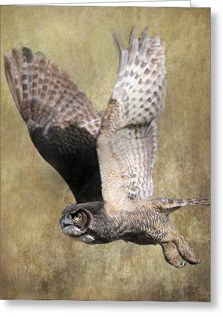 Owl In Flight Greeting Card by Angie Vogel
