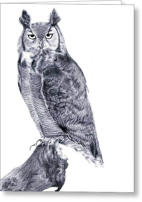 Lucy D Greeting Cards - Owl Greeting Card by Lucy D