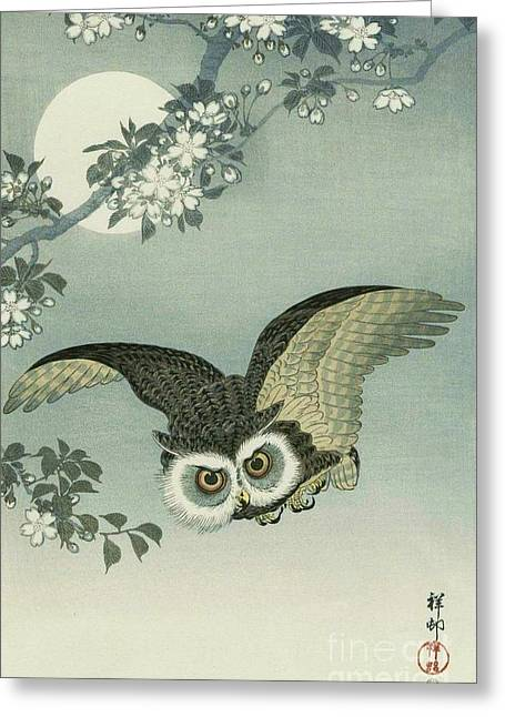 Cherry Blossoms Mixed Media Greeting Cards - Owl - Moon - Cherry Blossoms Greeting Card by Pg Reproductions