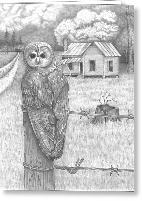 Owl On A Post Greeting Card by David Gallagher