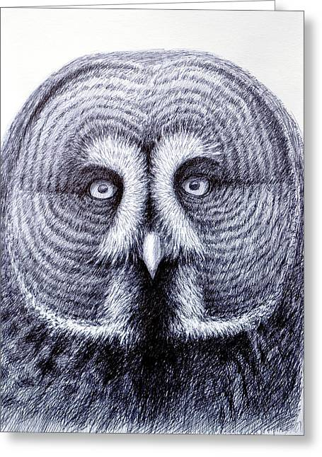 Drawings Of Barns Greeting Cards - Owl Portrait Greeting Card by Rick Hansen