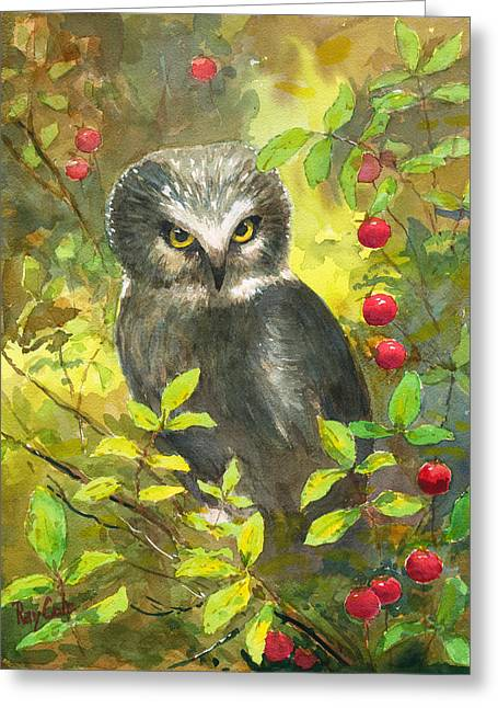 Recently Sold -  - Berry Greeting Cards - Owl Greeting Card by Ray Cole