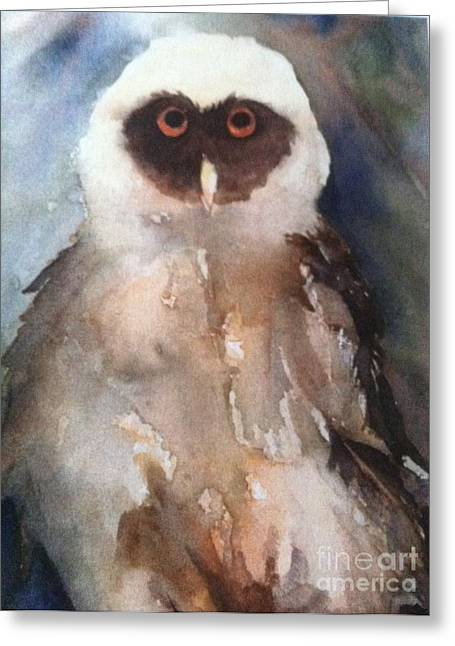 Owl Greeting Card by Sherry Harradence