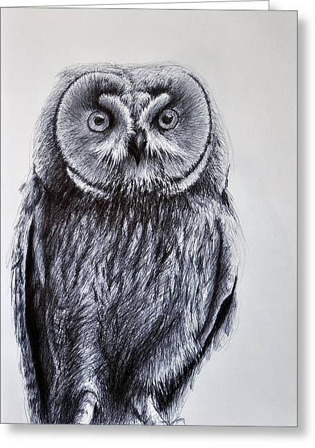 Original Owl Drawing Greeting Cards - Owl Standing Greeting Card by Rick Hansen