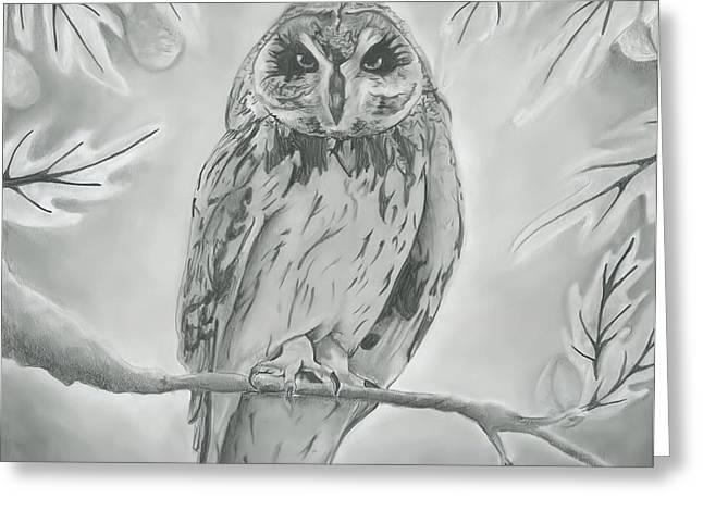 Fruit Tree Drawings Greeting Cards - Owl2 Greeting Card by Raquel Ventura