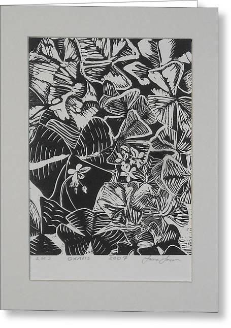Linocut Drawings Greeting Cards - Oxalis Greeting Card by Laura Larsen