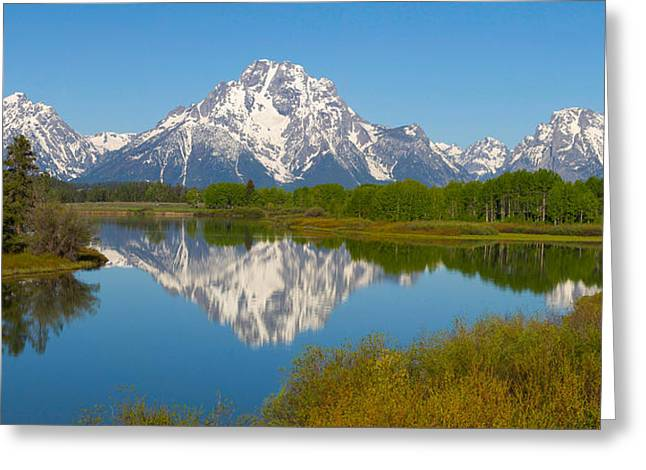 Taking Photographs Greeting Cards - Oxbow Bend Mt. Moran Greeting Card by Aaron Spong