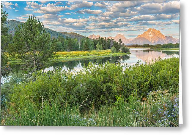 Oxbow Bend Summer Sunrise - Grand Teton National Park Greeting Card by Andres Leon
