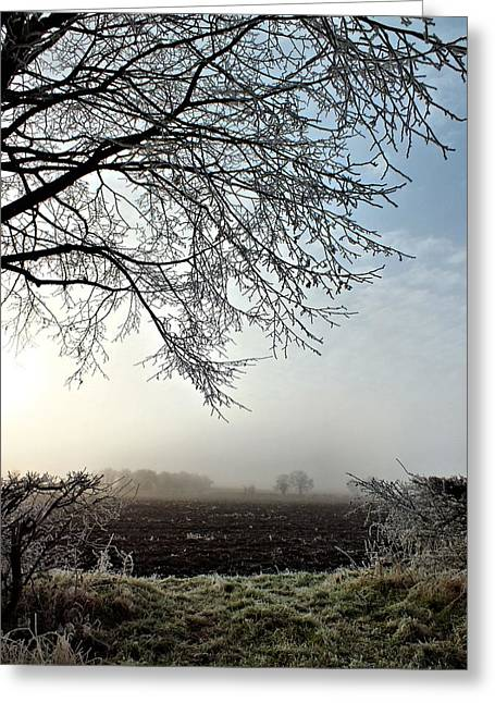 Brrrr Greeting Cards - Oxfordshire Frost Greeting Card by Lucy  Antony