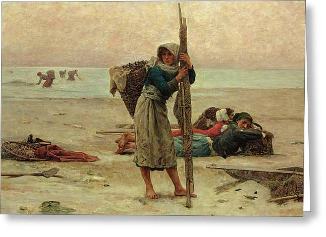 Ocean Shore Greeting Cards - Oyster Catching Greeting Card by Pierre Celestin Billet