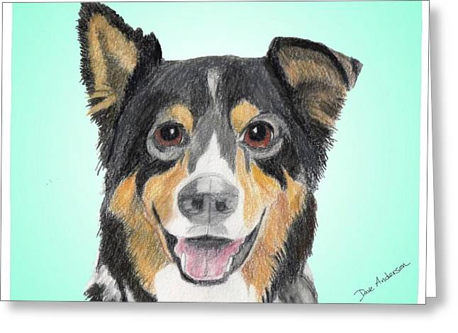 Collie Mixed Media Greeting Cards - Ozzie2 - a former shelter sweetie Greeting Card by Dave Anderson
