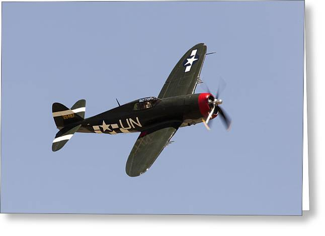 Olive Drab Greeting Cards - P-47 Thunderbolt Greeting Card by John Daly