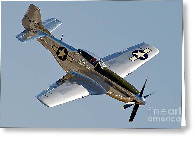 P-51 Mustang Photographs Greeting Cards - P-51 Mustang Greeting Card by Hank Taylor
