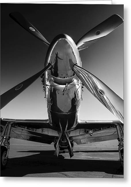 Black Greeting Cards - P-51 Mustang Greeting Card by John Hamlon