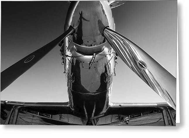 P-51 Mustang Greeting Card by John Hamlon