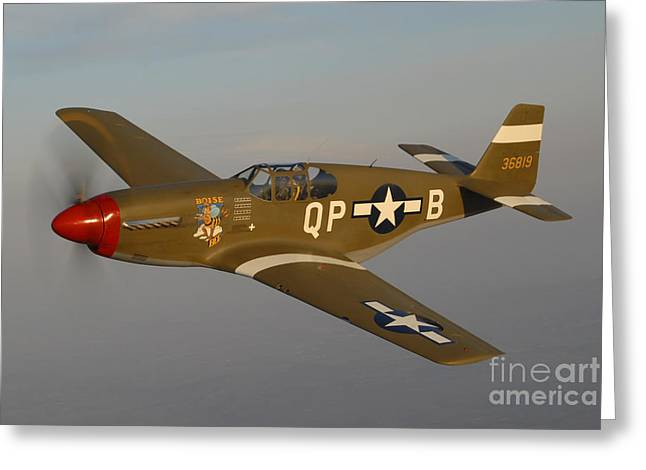 Monoplanes Greeting Cards - P-51c Mustang Flying Over Chino Greeting Card by Phil Wallick
