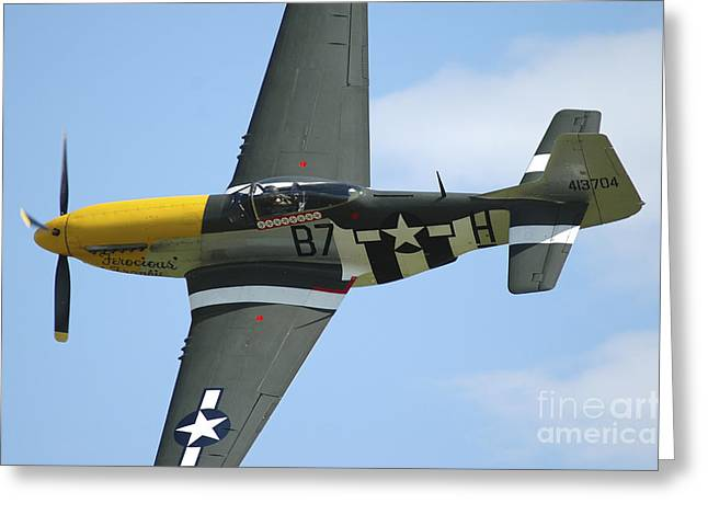 U.s. Army Air Corps Greeting Cards - P-51d Mustang In United States Army Air Greeting Card by Riccardo Niccoli