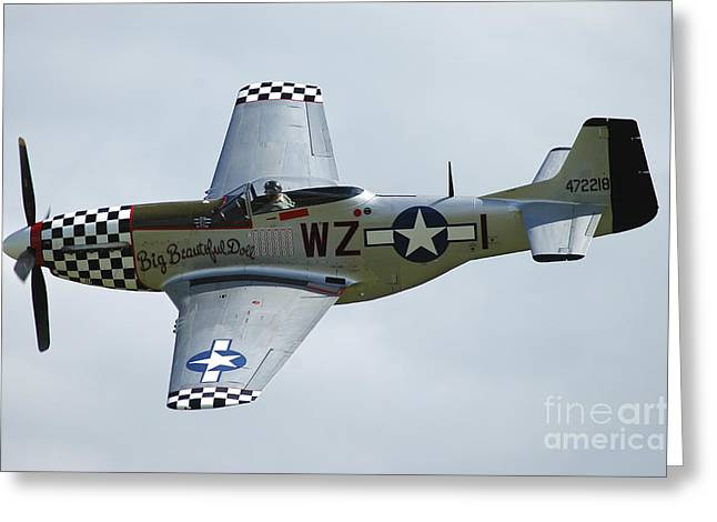 U.s. Army Air Corps Greeting Cards - P-51d Mustang In World War Ii United Greeting Card by Riccardo Niccoli