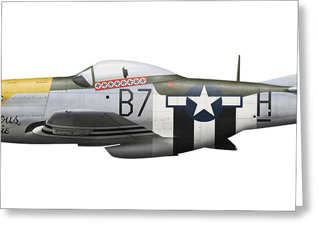 Vector Image Greeting Cards - P-51d Mustang, Nicknamed Ferocious Greeting Card by Inkworm