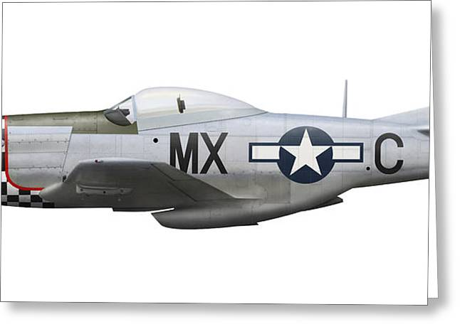 Vector Image Greeting Cards - P-51d Mustang Of The 78th Fighter Group Greeting Card by Inkworm