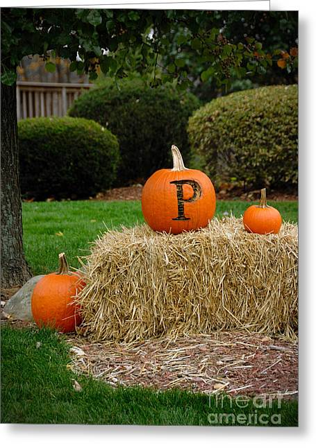 Fall Decoration Greeting Cards - P is for Pumpkin Greeting Card by Amy Cicconi
