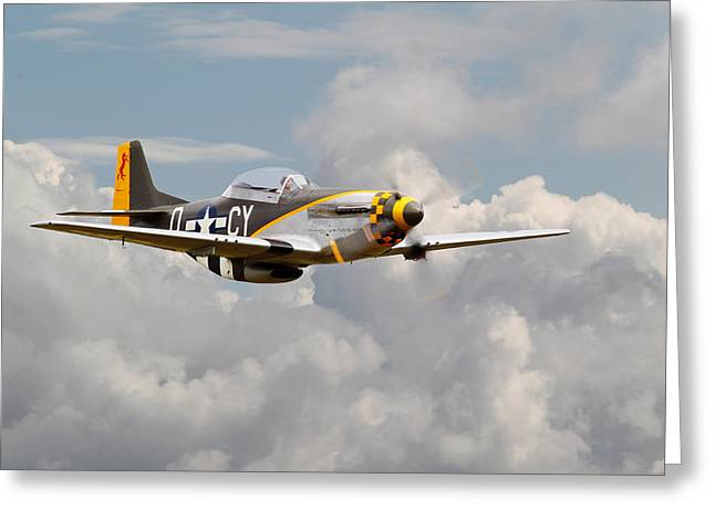 Fighter Aircraft Greeting Cards - P51 Mustang - Miss Velma Greeting Card by Pat Speirs