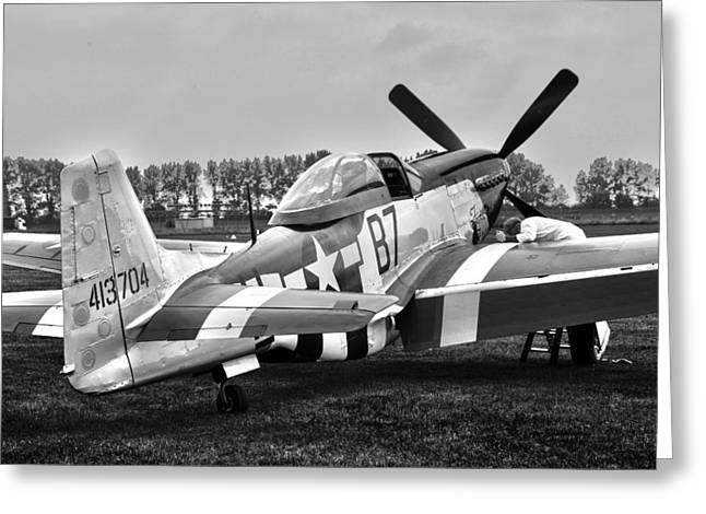 North Pyrography Greeting Cards - P51D Mustang Ferocious Frankie Greeting Card by John Richardson