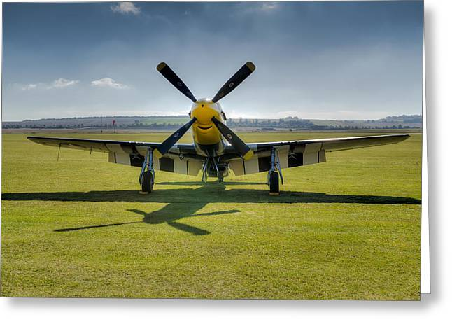 Ferocious Frankie Greeting Cards - P51D Mustang HDR Greeting Card by Gary Eason
