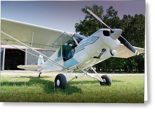 Tail-draggers Greeting Cards - PA-18 Piper Super Cub 002 Greeting Card by Phil Rispin