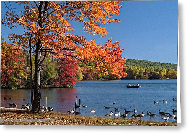 Fishing Creek Digital Greeting Cards - PA FrC 2066 Greeting Card by Scott McAllister