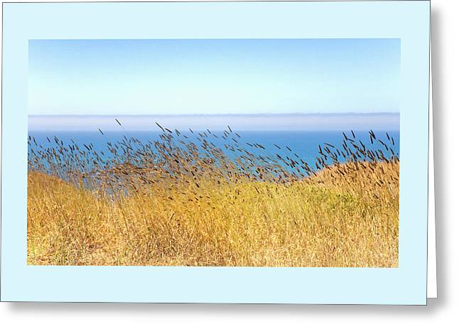 Pacific Breeze Sonoma Coast  Greeting Card by Daniel Furon