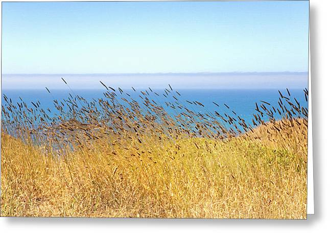 Breezy Greeting Cards - Pacific Breeze Sonoma Coast  Greeting Card by Daniel Furon