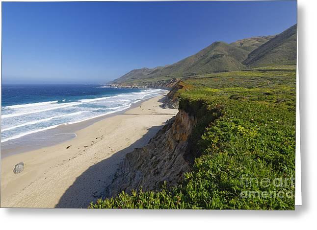 Pacific Coast Beach Vista Greeting Card by George Oze