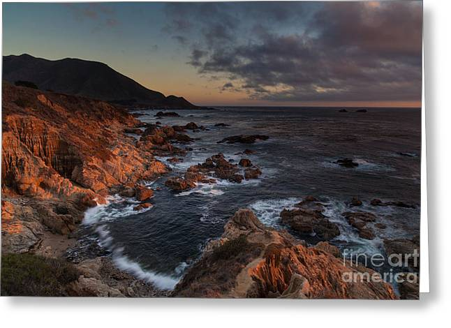 Pacific Coast Golden Light Greeting Card by Mike Reid