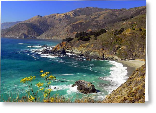 Coast Highway One Greeting Cards - Pacific Coast Highway   California Greeting Card by Willie Harper
