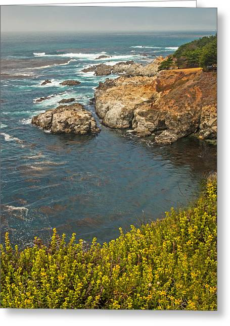 Coast Highway One Greeting Cards - Pacific Coast Highway Views Greeting Card by Willie Harper