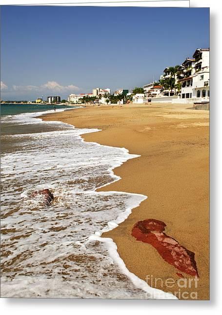 Puerto Vallarta Photographs Greeting Cards - Pacific coast of Mexico Greeting Card by Elena Elisseeva