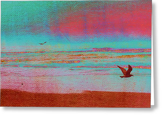 Beach Photography Mixed Media Greeting Cards - Pacific Flight Greeting Card by Bonnie Bruno