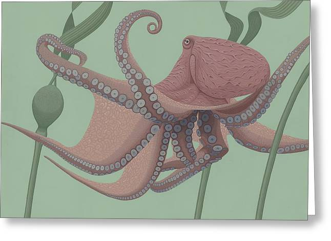 Pacific Giant Octopus Greeting Card by Nathan Marcy
