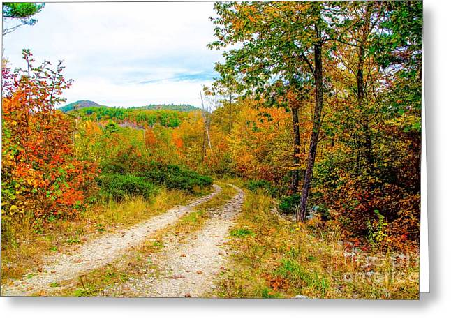 Rural Maine Roads Photographs Greeting Cards - Maine Autumn Greeting Card by Kevin Eckert Smith