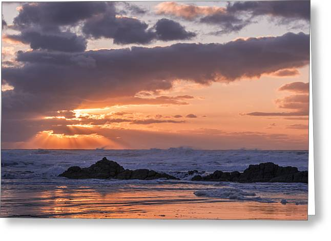 Pacific Glory Greeting Card by Loree Johnson