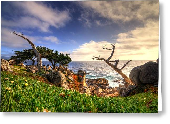 Pch Greeting Cards - Pacific Grove Greeting Card by Nisarg Patel